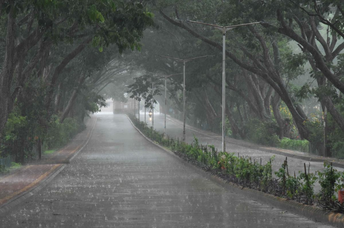 Monsoon to be active from Saturday