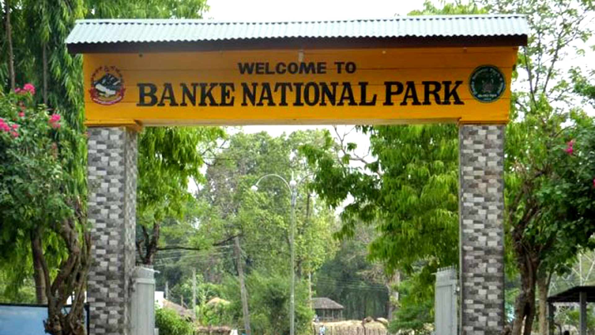 Untimely death of wildlife in Banke National Park on rise
