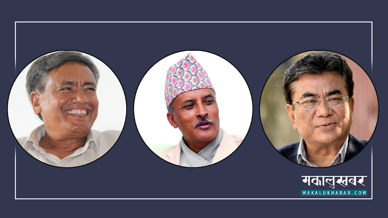 Formation of Foreign Department of the Maoist Center including former Ambassador Poudel and Maskey